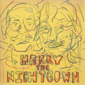 Harry the Nightgown - The Boid