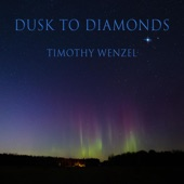 Timothy Wenzel - Fox and Butterfly (feat. Jeff Haynes)