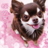 桜/卒業 オルゴール・コレクション