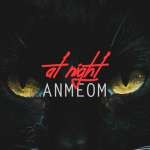Anmeom - At Night