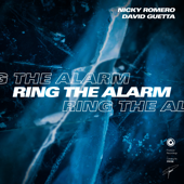 [Download] Ring the Alarm (Extended Mix) MP3