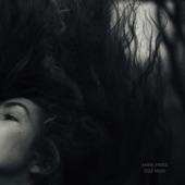 Anna Mieke - Warped Window