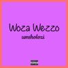 Woza wezzo - Msholozi artwork