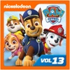 PAW Patrol, Vol. 13 - Synopsis and Reviews