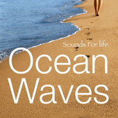 Ocean Waves 1  Sounds For Life - Sounds For Life