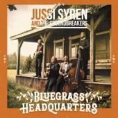 Ode to Bluegrass Mandolin artwork