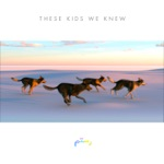Rostam - These Kids We Knew