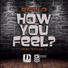 How You Feel feat Styles P Single