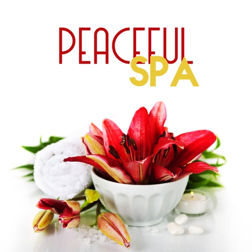 DOWNLOAD MP3: Relaxing Music Oasis - Oasis of Peace