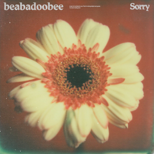beabadoobee - Sorry (Alternate Edit)
