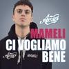Ci vogliamo bene by Mameli iTunes Track 1