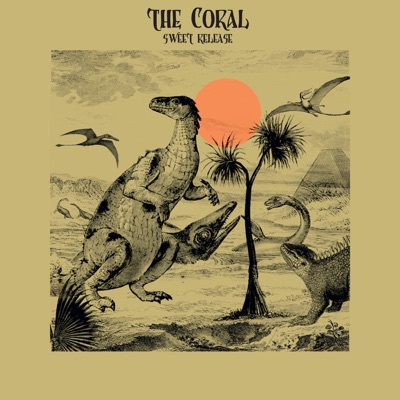 Sweet Release - Single - The Coral