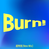 Burn(New Mix)