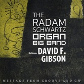 The Radam Schwartz Organ Big Band - Blues Minor (feat. David F Gibson)