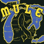Mule - Now I Truly Understand