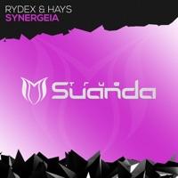 Synergeia - RYDEX-HAYS