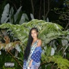 None of Your Concern feat Big Sean Single