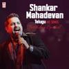 Shankar Mahadevan Telugu Hit Songs Birthday Special