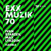Ivan Starzev & Max Lyazgin - Flexible artwork