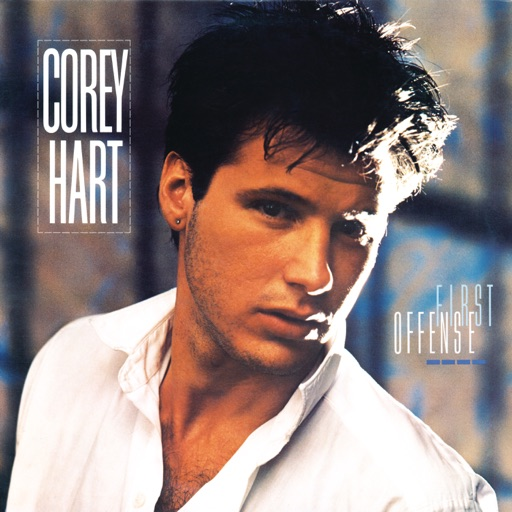 Art for Sunglasses At Night by Corey Hart