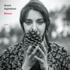 Areni Agbabian & Nicolas Stocker - Bloom  artwork