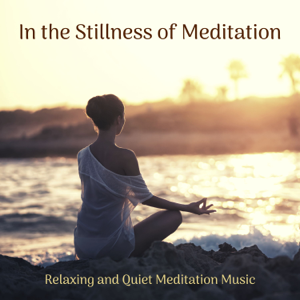 Various Artists - In the Stillness of Meditation - Relaxing and Quiet Meditation Music