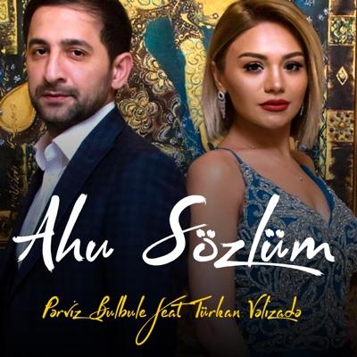 Ahu Gozlum Pərviz Bulbulə Feat Turkan Vəlizadə Shazam