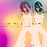 EUROPESE OMROEP | How Will I Know - Whitney Houston & Clean Bandit