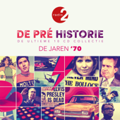 De Pré Historie - De Jaren '70