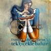 Daniska & Hüseyin Turan - Tek Çiçekle Bahar artwork