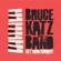 Get Your Groove - Bruce Katz Band