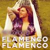 Roy Donders - Flamenco Flamenco kunstwerk