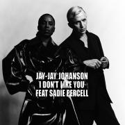 I Don't Like You (feat. Sadie Percell) - Jay-Jay Johanson