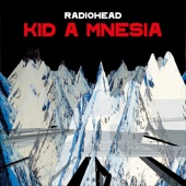 Radiohead - If You Say The Word