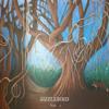 Sizzlebird - Wonderland artwork