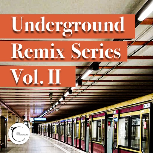 UndergrounD Remixes Serie Vol.II by Various Artists