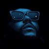 Swedish House Mafia & The Weeknd - Moth To A Flame bild