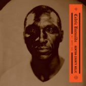 Cedric Burnside - Death Bell Blues