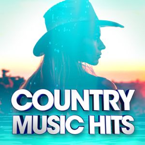 Various Artists - Country Music Hits