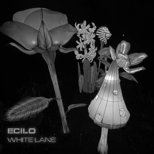 White Lane - EP by Ecilo