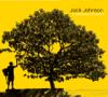 Jack Johnson - Better Together artwork