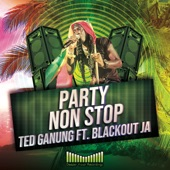 Ted Ganung - Party Non Stop (Original Mix)