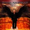 Steve Steinman - Take a Leap of Faith artwork