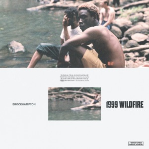 1999 WILDFIRE - Single Mp3 Download