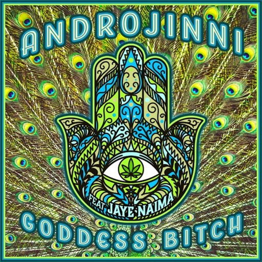 Goddess Bitch (feat. Jaye Naima) - Single by Androjinni