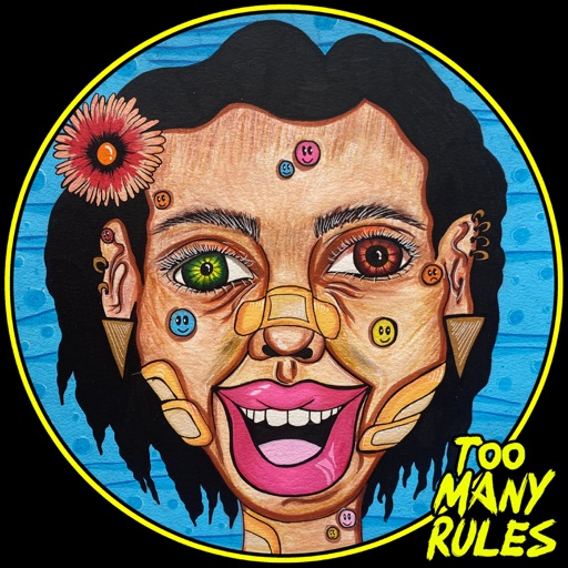 3 Years of Too Many Rules by Various Artists