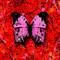 Download lagu Ed Sheeran - Bad Habits mp3