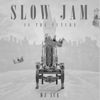 Slow Jam Is the Future (Instrumental) - DJ Ace