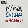 SIX60 - Pepeha artwork