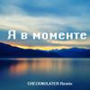CHECKNULATER - Я в моменте (Remix) обложка